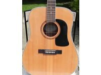Washburn Acoustic Guitar D10SK (Solid Spruce Top)