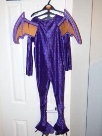 Dragon costume 4-6 year old
