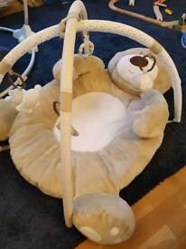 Baby bear play gym