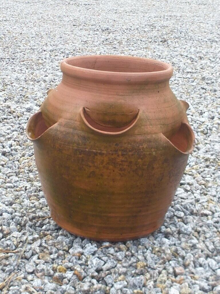 Vintage Well Weathered Terracotta Herb Or