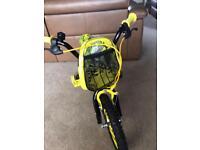 14 inch Dino bike