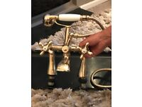 Gold Mixer taps with shower hose