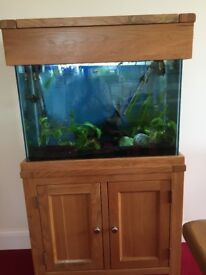 100 Litre Fish Tank (with extras).