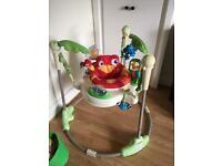 The Fisher-Price Rainforest Jumperoo