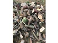 Large quantity of unseasoned logs available for free. Take what you need.