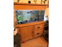 Aquarium + Stand + fish + accessories