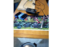 Tropical Fish Tank with base unit for storage