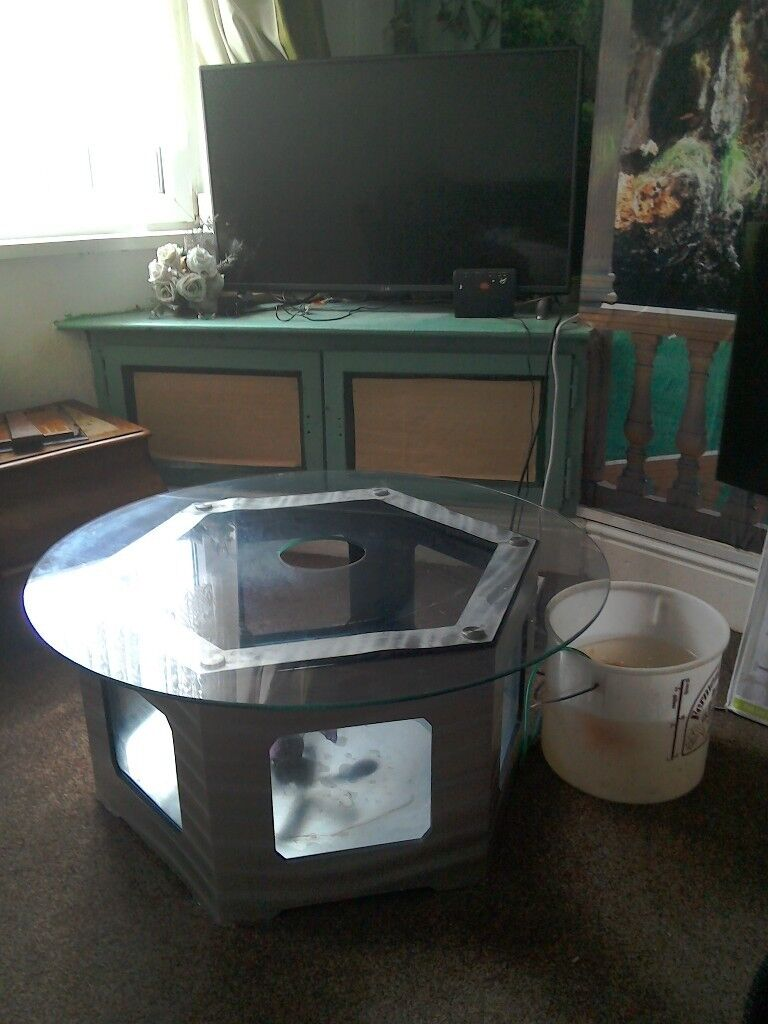 Hexagon Coffee Table Fish Tank For Sale In Good Condition Only Selling Due To Bad Back In Goldthorpe South Yorkshire Gumtree