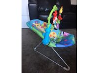 Fisher Price bouncy chair - music and vibrates
