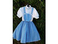 2 Adult fancy dress Dorothy costumes