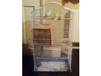 2 Bugies for sale including big cage