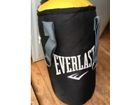 Ever last punch bag
