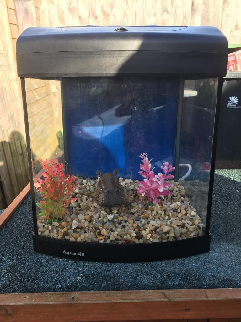 Fish tank with light and built in filter