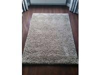 Long pile shaggy rug.