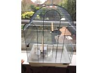 Canary cage for sale with accessories