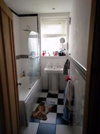 Double room in large, comfy 2-bed flat in Morningside