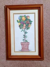 Picture: framed fruit topiary