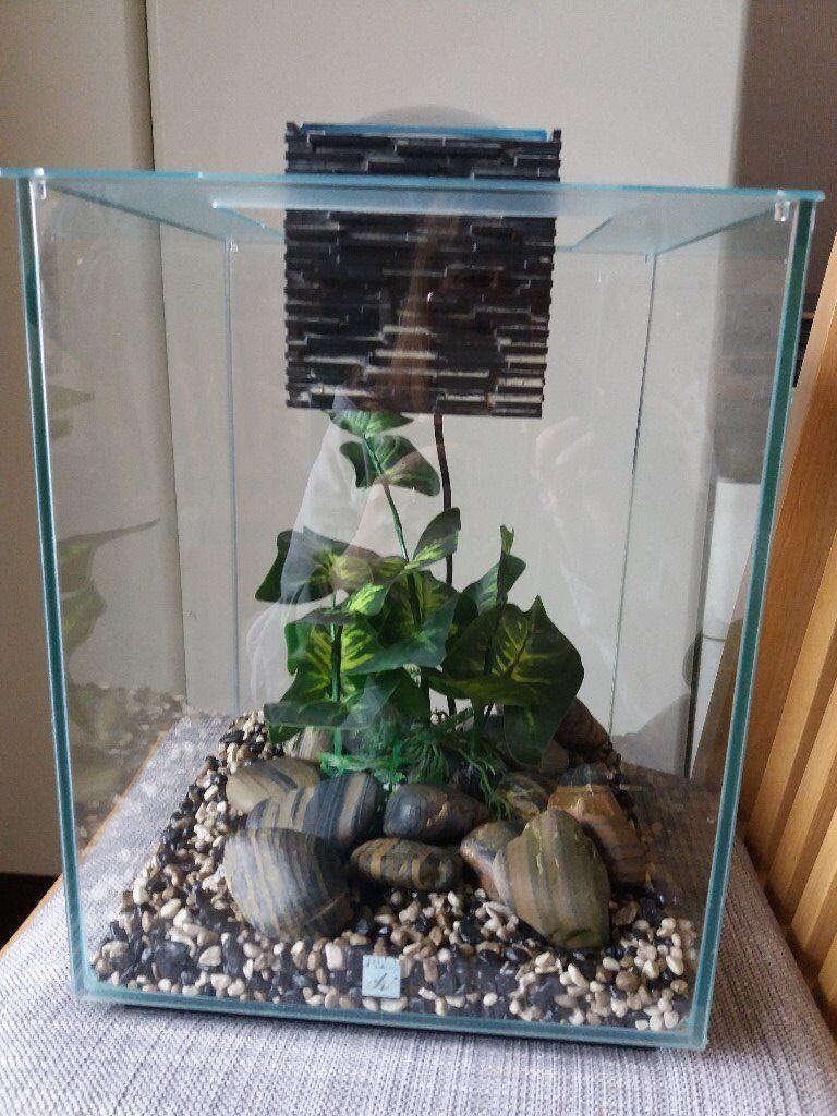 Fluval chi fish tank in hucknall nottinghamshire gumtree for Fluval chi fish tank