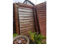 Nice size shed 1.5m w 2.5m l