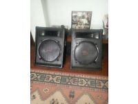 custom passave speakers 300 watts each