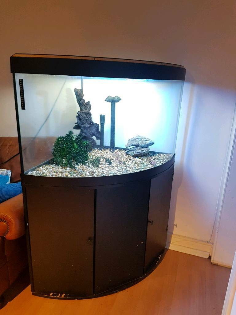 Fluval Corner Fish Tank And Stand For Sale Full Set Up