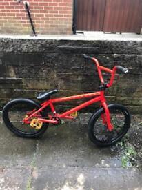 Sunday Gary Young expert BMX bike