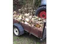 Logs for sale ( best value )
