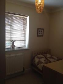 Single room to LET in West Ewell