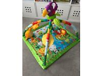 Baby gym play mat with musical bird