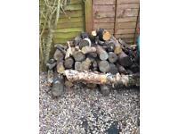 Logs - 1m lengths