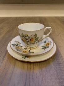 Taylor and Kent Cup and Saucer Trio - Bone Trio