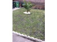 Cleaner garden