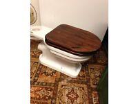 large vintage toilet