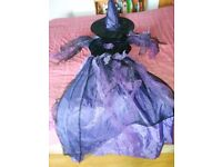 Womans spider witch Halloween costume size 14