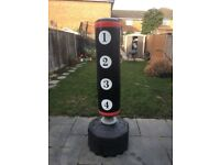 Gallant Free standing punching bag + gloves