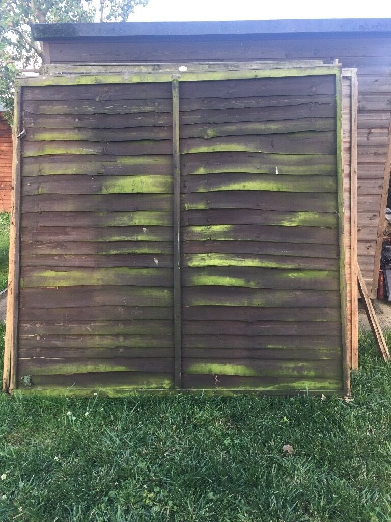 Used 6ft fence panels x15 in norwich norfolk gumtree used 6ft fence panels x15 image 1 of 3 baanklon Choice Image
