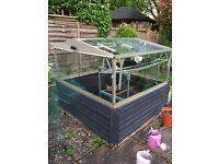 Cold frame with wooden base