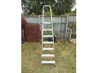 7 Rung including platform step ladder