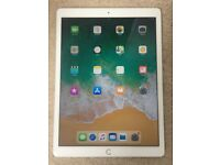 APPLE IPAD PRO 256GB 9.7 INCH IOS14 WIFI - great condition with charger can deliver