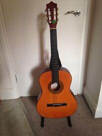 Herald Guitar HL44