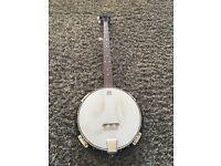 Countryman 5 string banjo