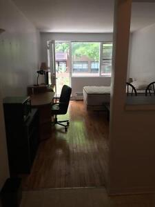1 & 1/2 Loft style studio apartment; McGill Ghetto