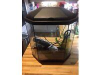 25 Litre Fish tank