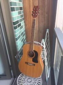 Acustic guitar - Whasburn D10S + Case