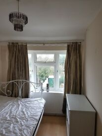 Large double room to let for single occupation