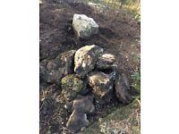 Decorative garden rockery stones