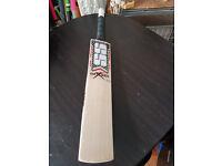 Powerfull English Willow Cricket Bat HUGE 39 mm Edge 11 TOP Grains 2.6 POUND