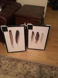 Brand new canvas framed art prints - feathers