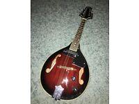 Wesley 8 string electric mandolin. Half new price!