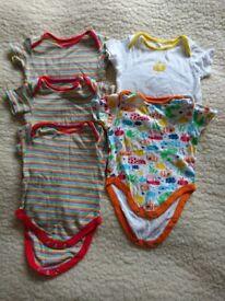 Baby 9-12 moths Bodysuits Vests bundle